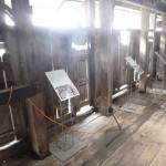 Shearing - Plätze