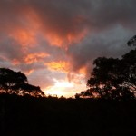 Sunset in Hazelbrook