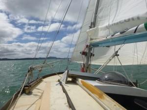 Immer die Segel im Wind