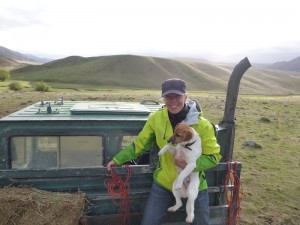 Feeding the cattles